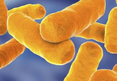 Tratamento da infecção tuberculosa pode ser mais barato